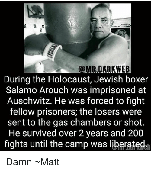 Bailey Jay, Memes, and Auschwitz: @MR DARKWEB  During the Holocaust, Jewish boxer  Salamo Arouch was imprisoned at  Auschwitz. He was forced to fight  fellow prisoners; the losers were  sent to the gas chambers or shot.  He survived over 2 years and 200  fights until the camp was liberatedah Damn ~Matt