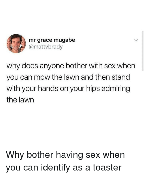 mugabe: mr grace mugabe  @mattvbrady  why does anyone bother with sex when  you can mow the lawn and then stand  with your hands on your hips admiring  the lawn Why bother having sex when you can identify as a toaster