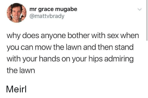 Sex, MeIRL, and Can: mr grace mugabe  @mattvbrady  why does anyone bother with sex when  you can mow the lawn and then stand  with your hands on your hips admiring  the lawn Meirl