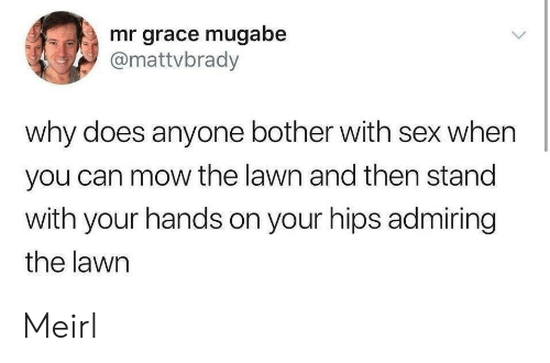 mugabe: mr grace mugabe  @mattvbrady  why does anyone bother with sex when  you can mow the lawn and then stand  with your hands on your hips admiring  the lawn Meirl
