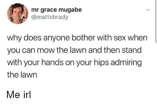 mugabe: mr grace mugabe  @mattvbrady  why does anyone bother with sex when  you can mow the lawn and then stand  with your hands on your hips admiring  the lawn Me irl