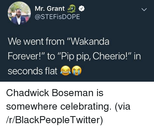 """cheerio: Mr. Grant  @STEFisDOPE  We went from """"Wakanda  Forever!"""" to """"Pip pip, Cheerio!"""" in  seconds flat <p>Chadwick Boseman is somewhere celebrating. (via /r/BlackPeopleTwitter)</p>"""