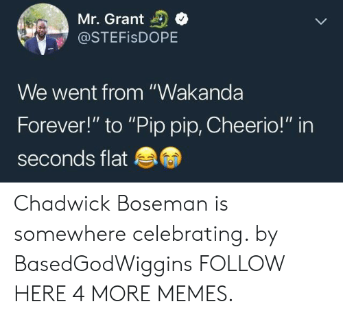 """cheerio: Mr. Grant  @STEFISDOPE  We went from """"Wakanda  Forever!"""" to """"Pip pip, Cheerio!"""" in  seconds flat Chadwick Boseman is somewhere celebrating. by BasedGodWiggins FOLLOW HERE 4 MORE MEMES."""