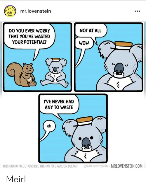 Not At All: mr.lovenstein  NOT AT ALL  DO YOU EVER WORRY  THAT YOU'VE WASTED  YOUR POTENTIAL?  WoW  I'VE NEVER HAD  ANY TO WASTE  oh  @MrLovenstein MRLOVENSTEIN.COM  THIS COMIC MADE POSSIBLE THANKS TO BRANDON DELAMP Meirl