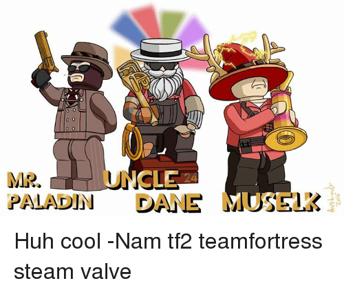MR PALADIN DANR MOS Huh Cool -Nam Tf2 Teamfortress Steam