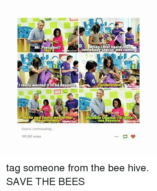 hives: Mr. President  en tirst heardthat  somebody specialwas coming  I really wanted it to be Beyonce  understand  Malia and Sasha wouldifeel  Michelle Obamd:l'd rather  see Beyonce  Source: commissairegi.  107,001 notes tag someone from the bee hive. SAVE THE BEES