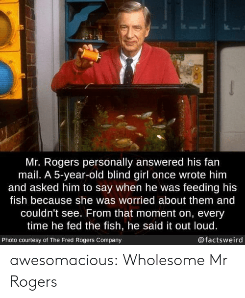 Tumblr, Blog, and Fish: Mr. Rogers personally answered his fan  mail. A 5-year-old blind girl once wrote him  and asked him to say when he was feeding his  fish because she was worried about them and  couldn't see. From that moment on, every  time he fed the fish, he said it out loud.  @factsweird  Photo courtesy of The Fred Rogers Company awesomacious:  Wholesome Mr Rogers