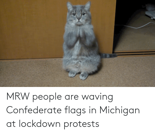 flags: MRW people are waving Confederate flags in Michigan at lockdown protests