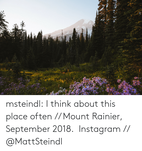 Instagram: msteindl: I think about this place often // Mount Rainier, September 2018.    Instagram // @MattSteindl