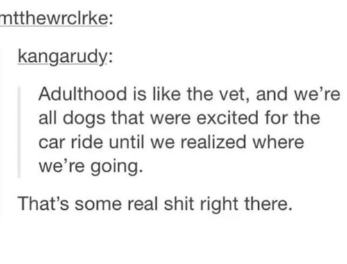 Dogs, Shit, and Humans of Tumblr: mtthewrclrke:  kangarudy  Adulthood is like the vet, and we're  all dogs that were excited for the  car ride until we realized where  we're going.  That's some real shit right there.