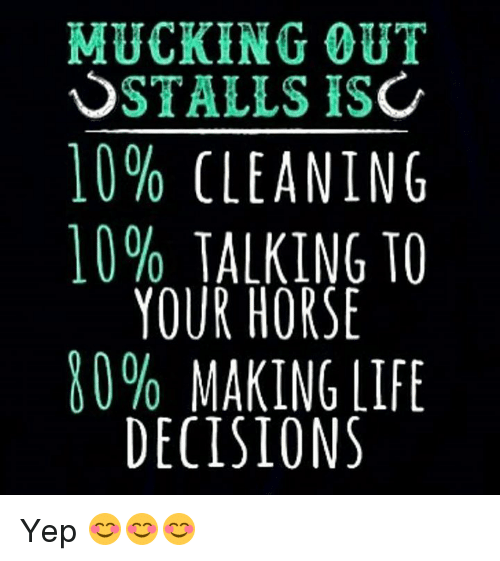 Horses, Memes, and Horse: MUCKING OUT  STALLS IS  10% CLEANING  10% TALKING TO  YOUR HORSE  80% MAKING LIFE  DECISIONS Yep 😊😊😊