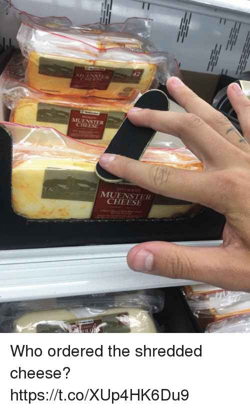 Memes, 🤖, and Cheese: MUENSTER.  CHEESE  DELI SLICED  CHEESE Who ordered the shredded cheese? https://t.co/XUp4HK6Du9