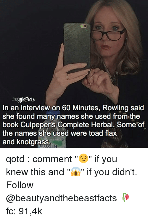 """Memes, 🤖, and Toad: mugglefacts  In an interview on 60 Minutes, Rowling said  She found many names she used from the  book Culpepers Complete Herbal. Some of  the names she used were toad flax  and knotgrass qotd : comment """"😏"""" if you knew this and """"😱"""" if you didn't. Follow @beautyandthebeastfacts 🥀 fc: 91,4k"""