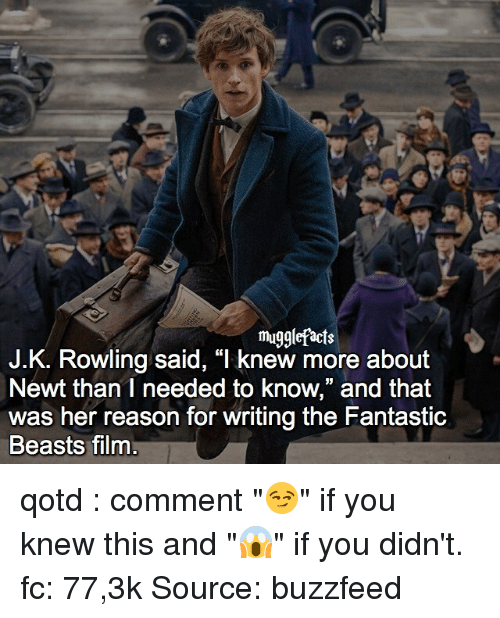 """Buzzfees: mugglefacts  J.K. Rowling said, """"I knew more about  Newt than I needed to know,"""" and that  was her reason for writing the Fantastic  Beasts film qotd : comment """"😏"""" if you knew this and """"😱"""" if you didn't. fc: 77,3k Source: buzzfeed"""