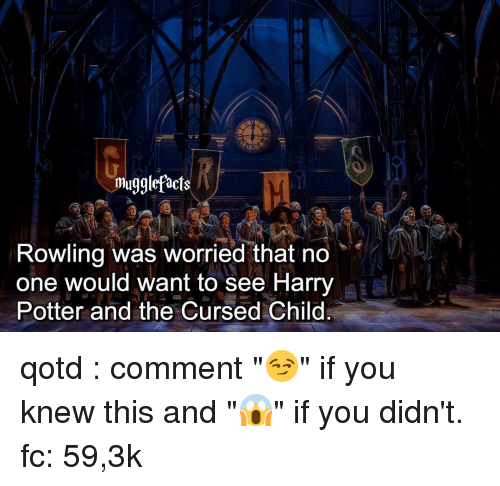 """Harry Potter And The Cursed Child: mugglefacts  Rowling was worried that no  one would want to see Harry  Potter and the Cursed Child qotd : comment """"😏"""" if you knew this and """"😱"""" if you didn't. fc: 59,3k"""