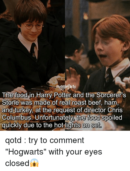 "Turkeyism: mugglefacts  The foodin Harry Potter and the Sorcerer's  Stone was made of real roast beef, ham  and turkey, at the request of director Chris  Columbus. Unfortunately, the food spoiled  quickly due to the hot lights on set qotd : try to comment ""Hogwarts"" with your eyes closed😱"