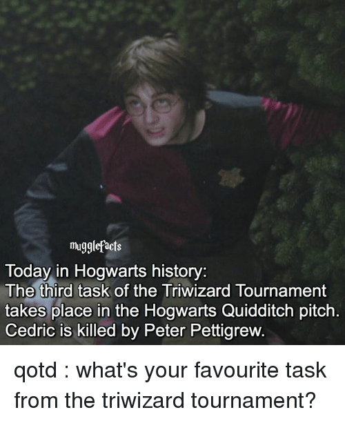 Quidditch: mugglefacts  Today in Hogwarts history:  The third task of the Triwizard Tournament  takes place in the Hogwarts Quidditch pitch  Cedric is killed by Peter Pettigrew qotd : what's your favourite task from the triwizard tournament?