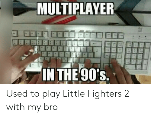 the 90s: MULTIPLAYER  IN THE 90's Used to play Little Fighters 2 with my bro