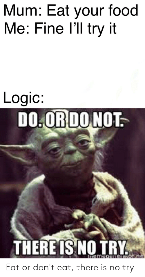 do or do not there is no try: Mum: Eat your food  Me: Fine l'll try it  Logic:  DO.OR DO NOT.  THERE IS NO TRY  Imemegeneator.net Eat or don't eat, there is no try