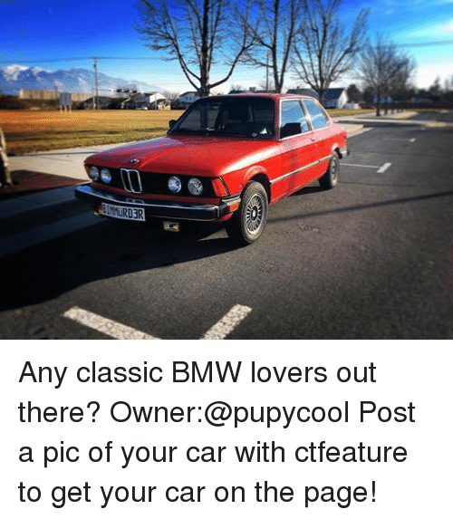 Bmw, Memes, and 🤖: MURDR Any classic BMW lovers out there? Owner:@pupycool Post a pic of your car with ctfeature to get your car on the page!