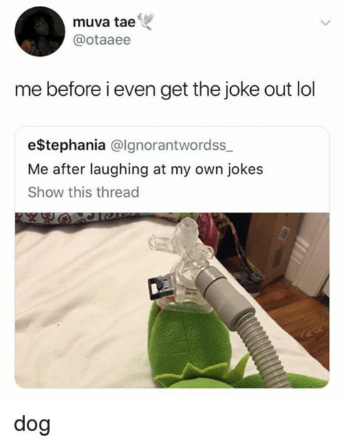 Lol, Jokes, and Dog: muva tae'  @otaaee  me before i even get the joke out lol  e$tephania @lgnorantwordss_  Me after laughing at my own jokes  Show this thread dog