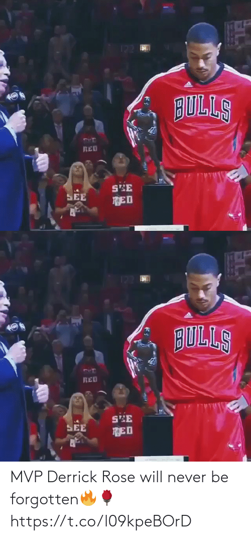 Rose: MVP Derrick Rose will never be forgotten🔥🌹  https://t.co/l09kpeBOrD