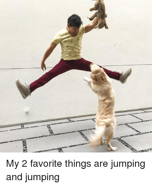 Dank, 🤖, and Jumping: My 2 favorite things are jumping and jumping