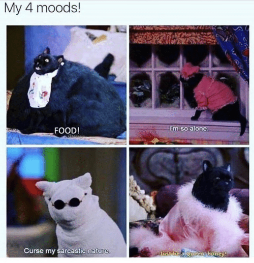 sarcastic: My 4 moods!  FOOD!  im soalone  Curse my sarcastic nature