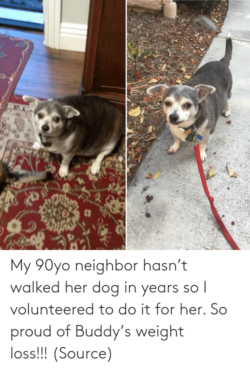 Dog: My 90yo neighbor hasn't walked her dog in years so I volunteered to do it for her. So proud of Buddy's weight loss!!! (Source)