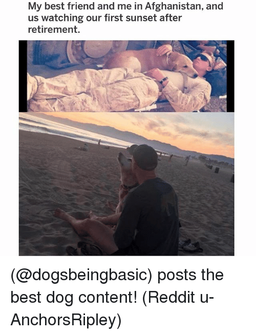 Best Friend, Memes, and Reddit: My best friend and me in Afghanistan, and  us watching our first sunset after  retirement. (@dogsbeingbasic) posts the best dog content! (Reddit u-AnchorsRipley)
