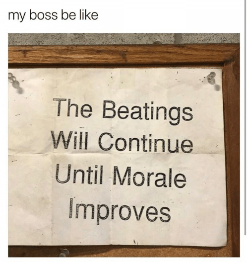 Be Like, Dank, and 🤖: my boss be like  The Beatings  Will Continue  Until Morale  Improves