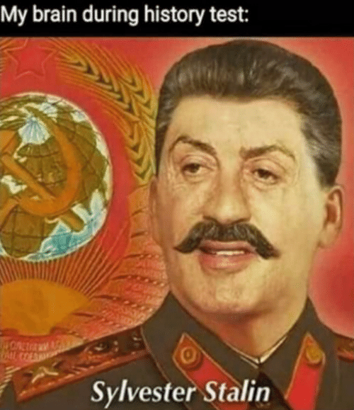 stalin: My brain during history test:  0  Sylvester Stalin