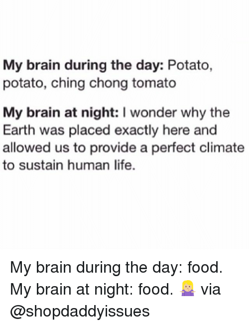 humanism: My brain during the day: Potato,  potato, ching chong tomato  My brain at night: I wonder why the  Earth was placed exactly here and  allowed us to provide a perfect climate  to sustain human life. My brain during the day: food. My brain at night: food. 🤷🏼‍♀️ via @shopdaddyissues
