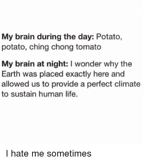 Funny, Life, and Brain: My brain during the day: Potato,  potato, ching chong tomato  My brain at night: I wonder why the  Earth was placed exactly here and  allowed us to provide a perfect climate  to sustain human life. I hate me sometimes