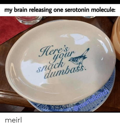 snack: my  brain releasing one serotonin molecule:  ere's  your  Snack  dumbass  @mentalbotch meirl