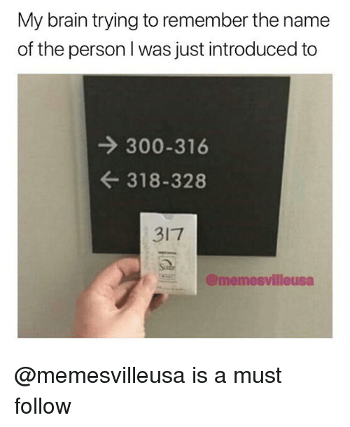 Memes, Brain, and 🤖: My brain trying to remember the name  of the person I was just introduced to  → 300-316  ← 318-328  317  E트 @memesvilleusa @memesvilleusa is a must follow