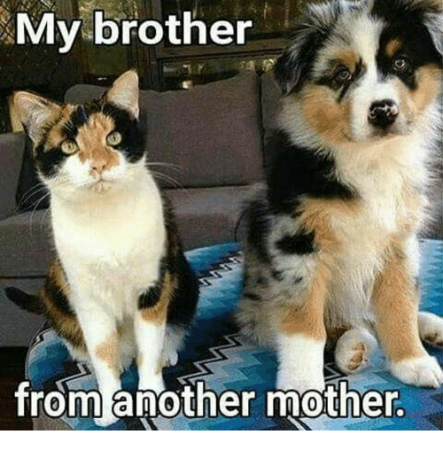Brother From Another Mother: My brother  from another mother.