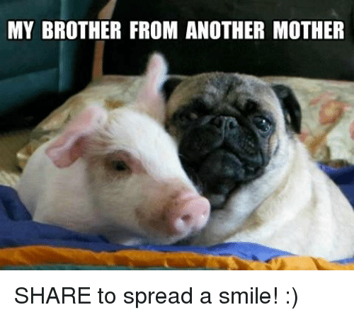 Brother From Another Mother: MY BROTHER FROM ANOTHER MOTHER SHARE to spread a smile! :)