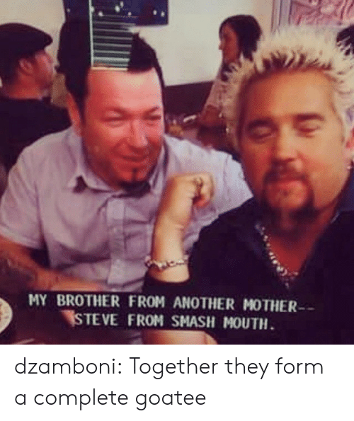 Brother From Another Mother: MY BROTHER FROM ANOTHER MOTHER  STEVE FROM SMASH MOUTH dzamboni: Together they form a complete goatee