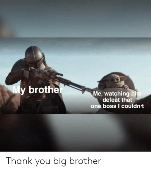 defeat: My brother  Me, watching him  defeat that  one boss I couldn't Thank you big brother