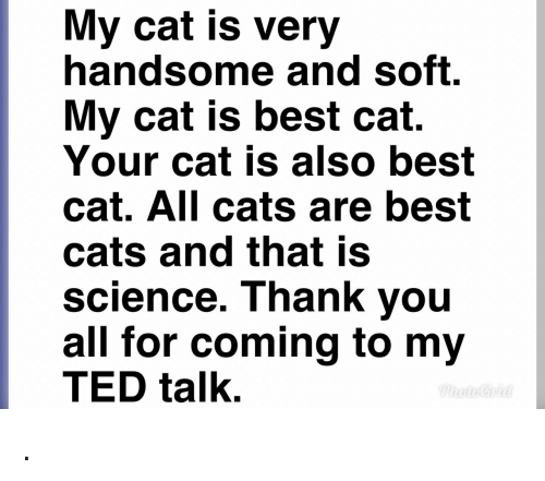 Best Cat: My cat is very  handsome and soft.  My cat is best cat.  Your cat is also best  cat. All cats are best  cats and that is  science. Thank you  all for coming to my  TED talk. .