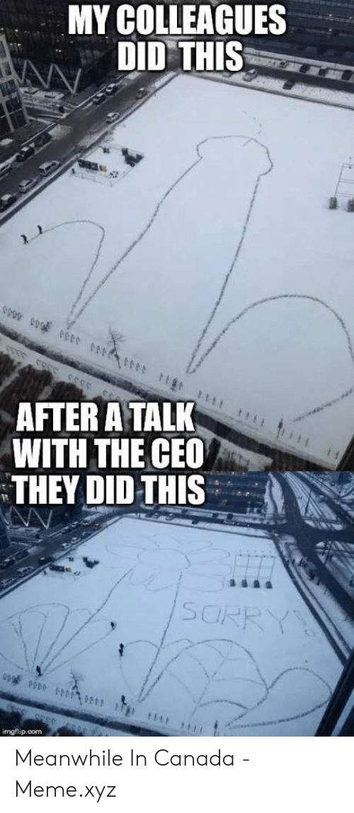 Canada Meme: MY COLLEAGUES  DID THIS  AFTER A TALK  WITH THE CEO  THEY DID THIS  imgflip,com Meanwhile In Canada - Meme.xyz