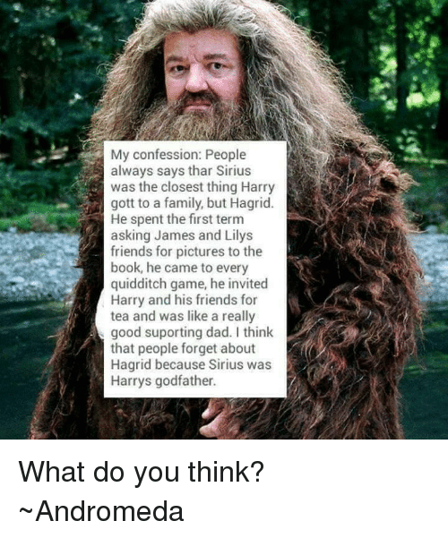 godfathers: My confession: People  always says thar Sirius  was the closest thing Harry  gott to a family, but Hagrid  He spent the first term  asking James and Lilys  friends for pictures to the  L  book, he came to every  quidditch game, he invited  Harry and his friends for  tea and was like a really  good suporting dad. I think  that people forget about  Hagrid because Sirius was  Harrys godfather. What do you think?  ~Andromeda