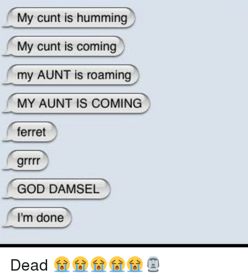 God, Cunt, and Ferret: My cunt is humming  My cunt is coming  my AUNT is roaming  MY AUNT IS COMING  ferret  GOD DAMSEL  I'm done Dead 😭😭😭😭😭🗿
