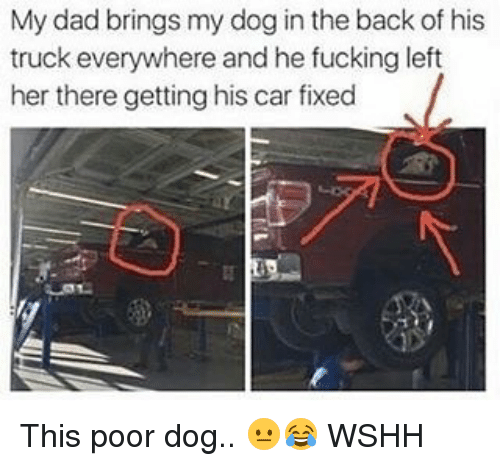 Dad, Fucking, and Memes: My dad brings my dog in the back of his  truck everywhere and he fucking left  her there gettinghis car fixed This poor dog.. 😐😂 WSHH