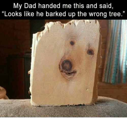 """Dad, Memes, and Tree: My Dad handed me this and said,  """"Looks like he barked up the wrong tree."""""""