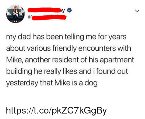Dad, Memes, and Been: my dad has been telling me for years  about various friendly encounters with  Mike, another resident of his apartment  building he really likes and i found out  yesterday that Mike is a dog https://t.co/pkZC7kGgBy