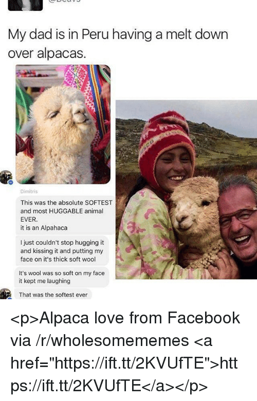 "Dad, Facebook, and Love: My dad is in Peru having a melt down  over alpacas.  Dimitris  This was the absolute SOFTEST  and most HUGGABLE animal  EVER  it is an Alpahaca  I just couldn't stop hugging it  and kissing it and putting my  face on it's thick soft wool  It's wool was so soft on my face  it kept me laughing  That was the softest ever <p>Alpaca love from Facebook via /r/wholesomememes <a href=""https://ift.tt/2KVUfTE"">https://ift.tt/2KVUfTE</a></p>"