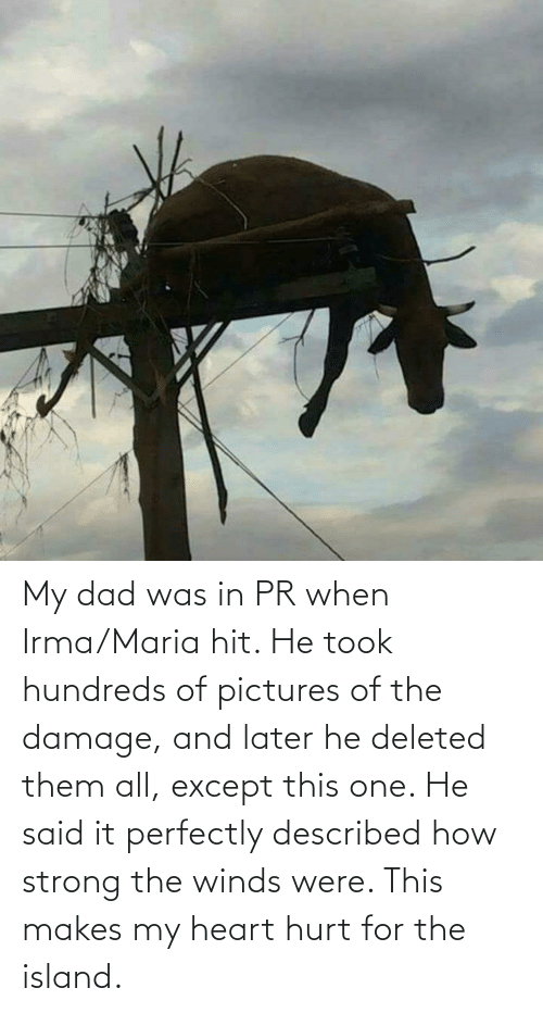 maria: My dad was in PR when Irma/Maria hit. He took hundreds of pictures of the damage, and later he deleted them all, except this one. He said it perfectly described how strong the winds were. This makes my heart hurt for the island.