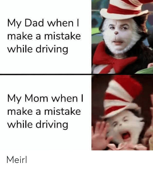 A Mistake: My Dad when I  make a mistake  while driving  My Mom when I  make a mistake  while driving Meirl